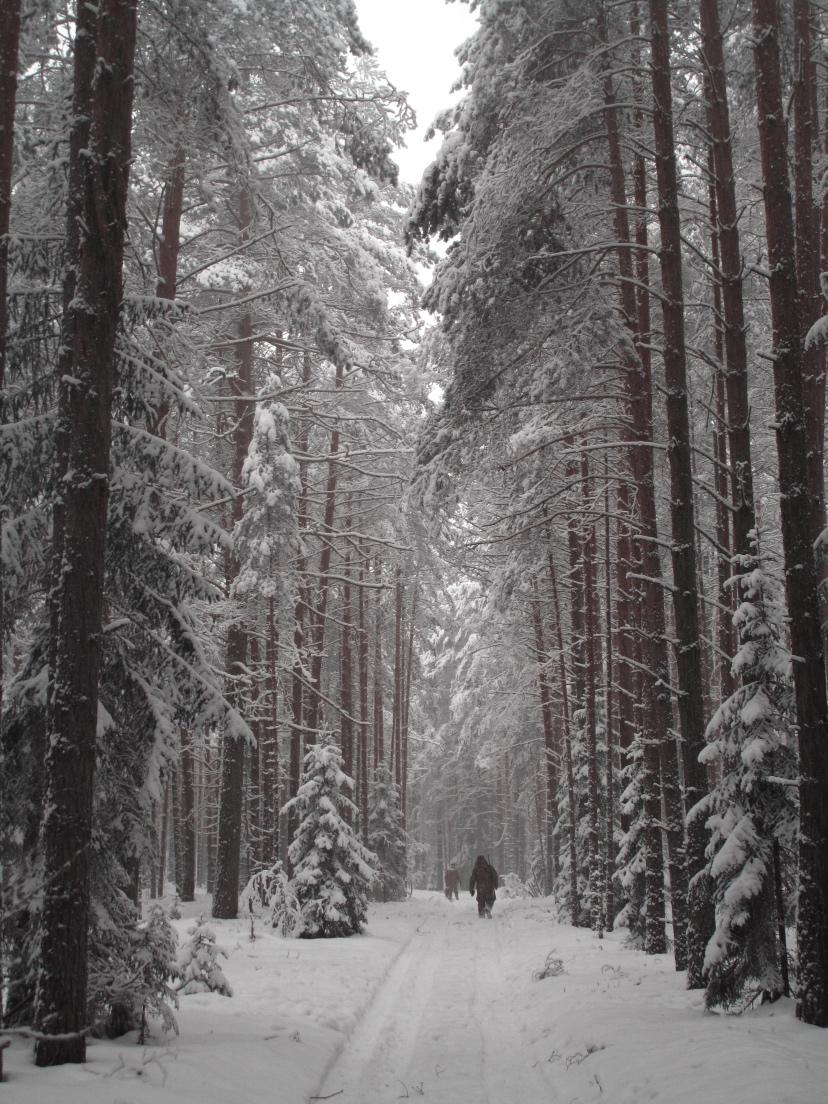 Tofalaria - Ascia - Russia Trekking
